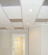 Basement Ceiling Tiles for a project we worked on in Raymore, Kansas and Missouri